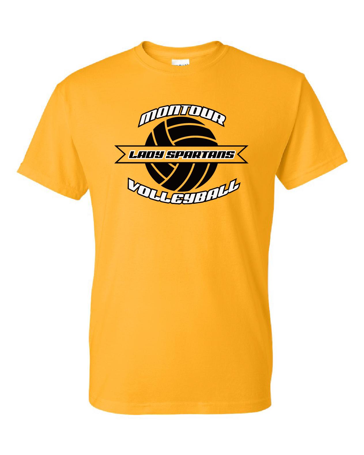 Gildan – DryBlend 50/50 T-Shirt DESIGN B